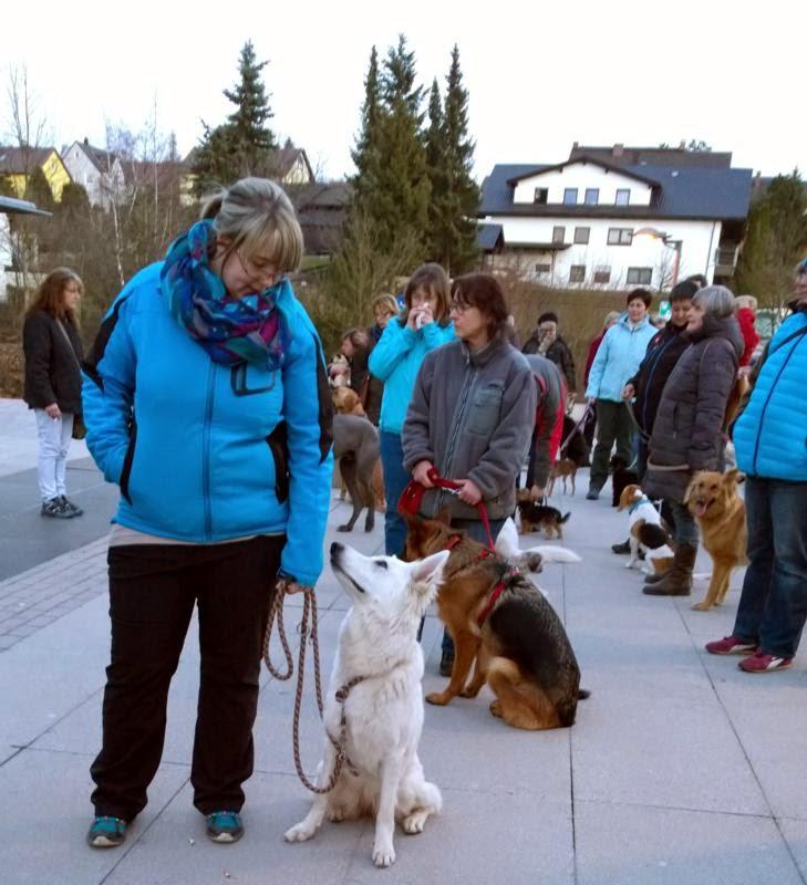 2015-04-07 Hundeschule Immenreuth On Tour in Marktredwitz im Auenpark - Marktredwitz%2B%252812%2529.jpg
