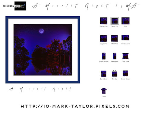 A Moonlit Night by Mark Taylor