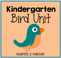 Kindergarten Bird Unit