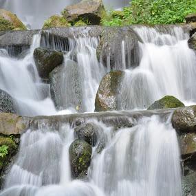 WaterFall by Sankar GM - Nature Up Close Water ( waterfalls, greenery, milkwhite, white, manmade,  )
