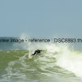 _DSC8893.thumb.jpg