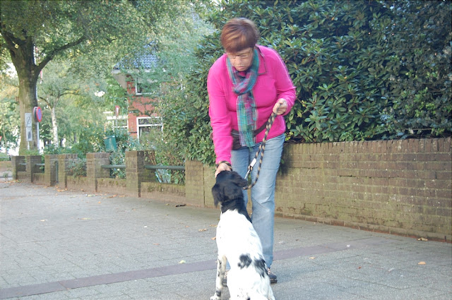 KNON pups in de stad 09-2011 - DSC_0054.JPG