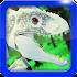 Dinosaur World Jurassic Toys Video