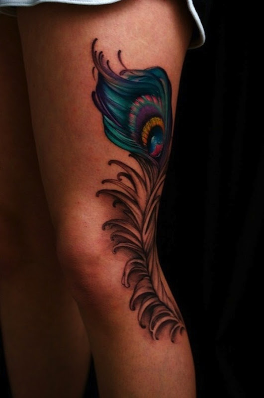 colorido_e_preto_realista_pena_de_pavo_de_tatuagem