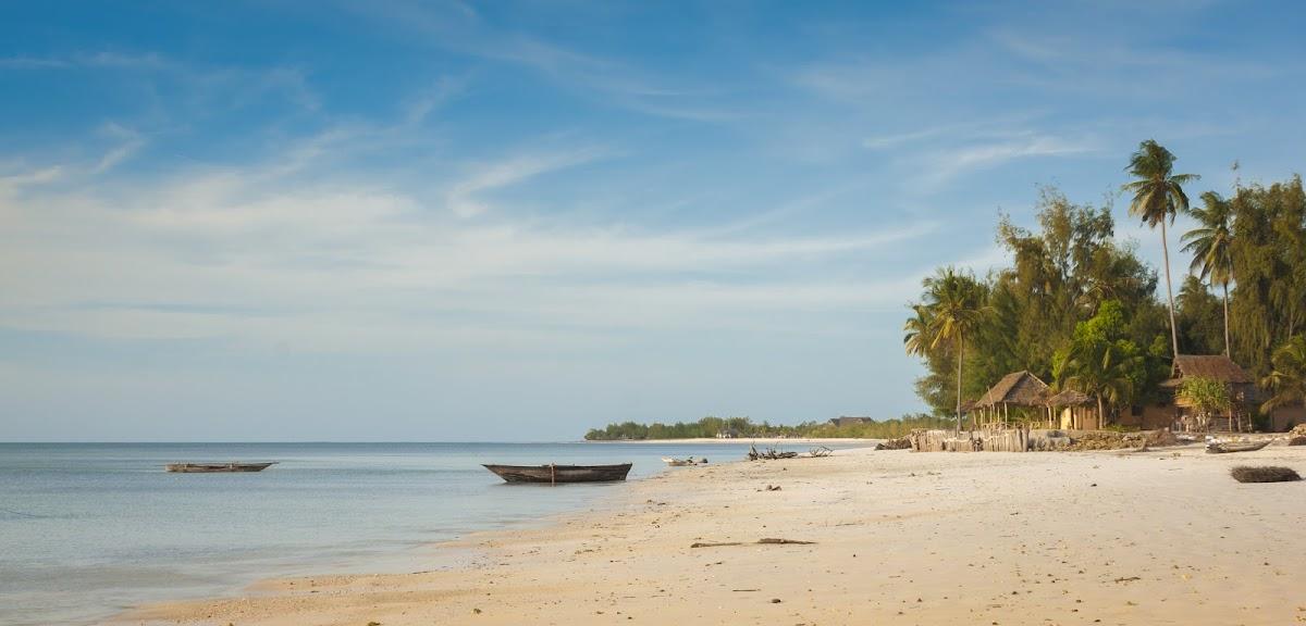 TanzaniaDSC04835_1.jpg
