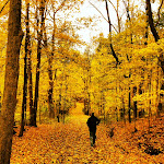 Julianne_Drew-October_Trails.jpg