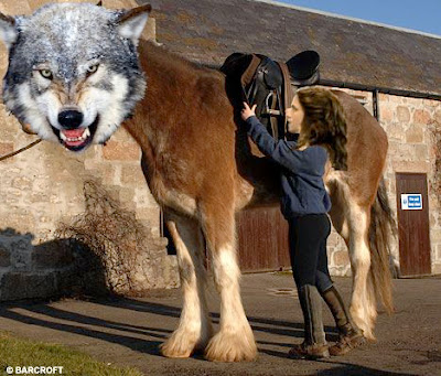 werewolf%2Bclydesdale.jpg