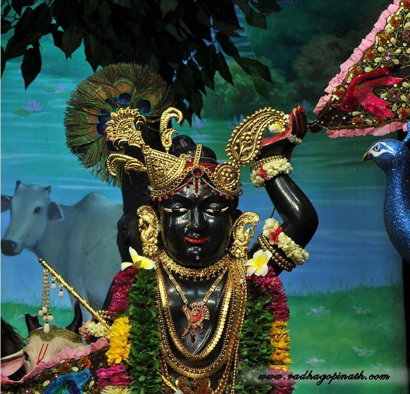 ISKCON Chowpatty Deity Darshan 01 Mar 2016  (21)