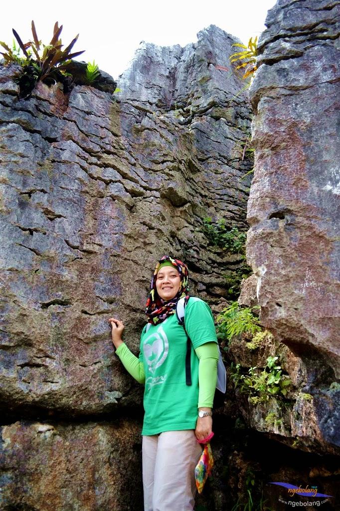 stone garden 18  april 2015 nikon  08