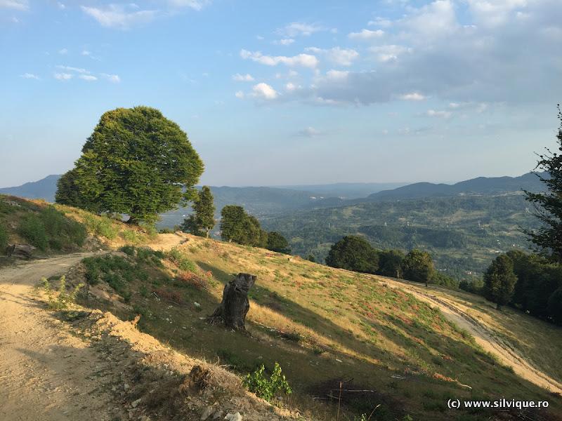 2015.07.29 – Fagarasi – Maraton Vidraru Chalenge