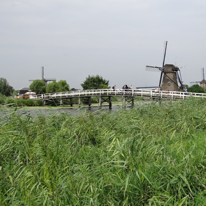 Day_6_Kinderdijk_43.JPG