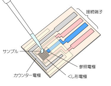 Image17-2.jpg