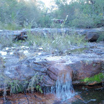 Small cascade at Lovetts Pools (308066)
