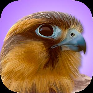 iBird Pro Birds North America