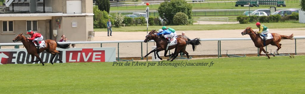 Photos Longchamp 25-05-2014 IMG_1096