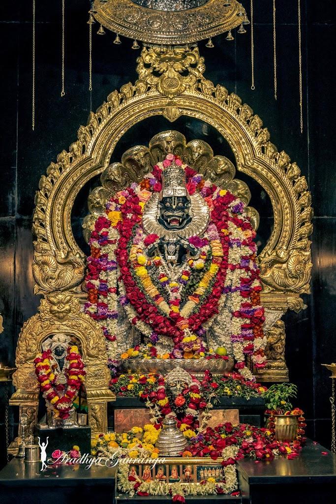 ISKCON Mayapur Deity Darshan 13 Jan 2017 (5)