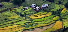 Landscape Beauty of Kashmir