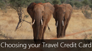 How to choose the right Travel Credit Card?