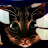 cman52894 avatar image