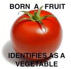 [transgender+tomato%5B3%5D]