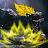 Themino Saur avatar image