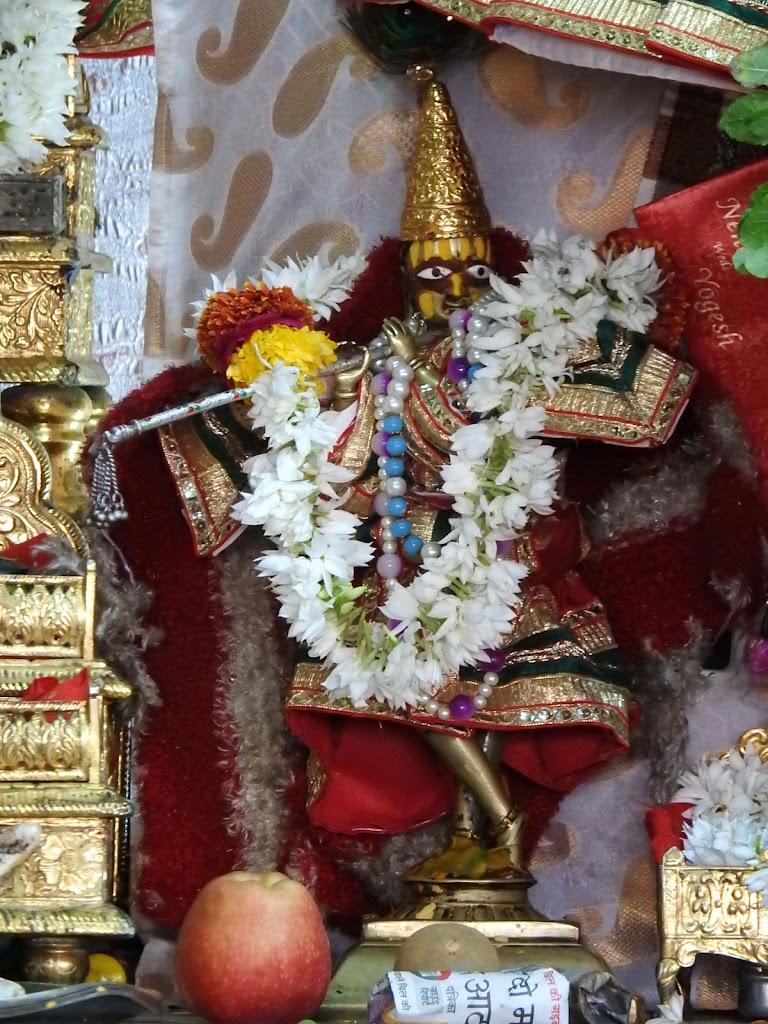 Radha Govind Devji Deity Darshan 02 Jan 2017 (9)