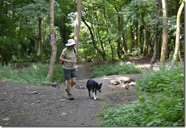 11a woodland