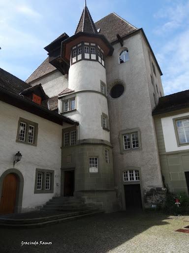 passeando - Passeando pela Suíça - 2012 - Página 14 DSC05132