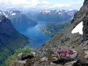 Hjørundfjorden sett fra Slogen (1559 moh)