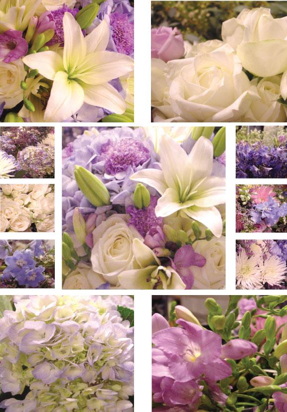 White Wedding Flowers March : Julie liles floral event design vanda tim wedding