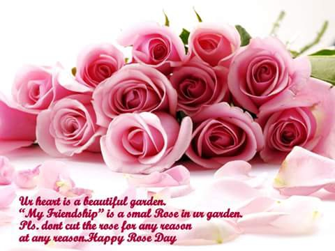 Flower With Quote Dp For Whatsapp FB Quotes On Pictures Images Beautiful Flowers Roses