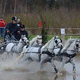 Paardenmennen Achter 't Peerd SGMW 2012 - Foto's: Mirjam Leppers