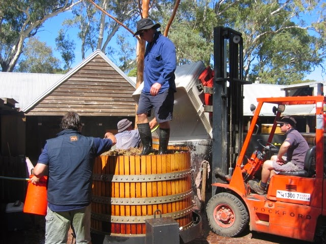 Foot Stomping at Rockford (Barossa Valley). (640x480)