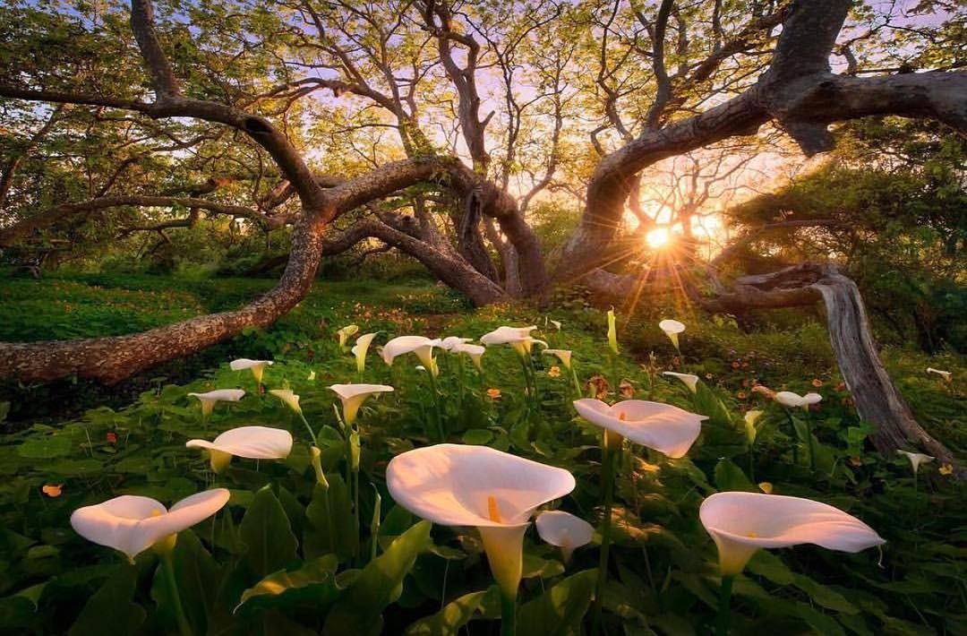 paisajes-naturales2