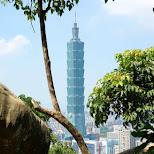 Taipei 101 from elephant mountain in Taipei, T'ai-pei county, Taiwan