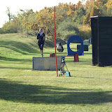 THS Herbstprüfung mit Vereinsmeisterschaft 2015 - DSC03363%2B%2528Gro%25C3%259F%2529.JPG