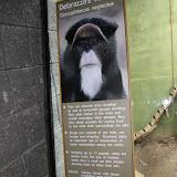 Zoo Snooze 2015 - IMG_7311.JPG