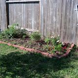 Gardening 2010 - 101_1386.JPG