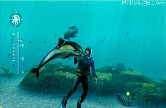 Дельфин из Endless ocean