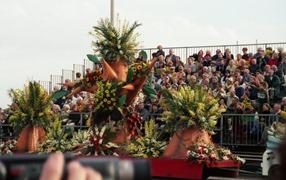 2001.02.24-141.15 bataille des fleurs