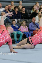 Han Balk Fantastic Gymnastics 2015-0243.jpg