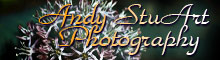 Visit Andy StuArt Photography