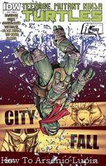 Actualización 09/06/2016: Se agrega el numero #22 de la serie regular tradumaqueteado por Black Beetle y Ted Kord para la mansion del CRG.
