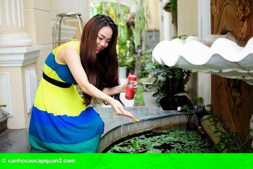 Hình 7: Tiểu cảnh đẹp mê ly trong sân vườn nhà sao Việt