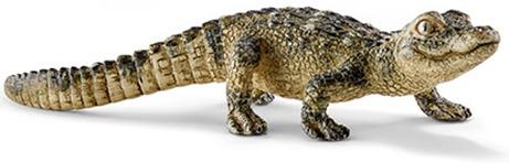 Crocodilo de um certo karaoke