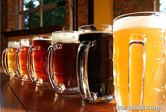 klassifikaciya-piva