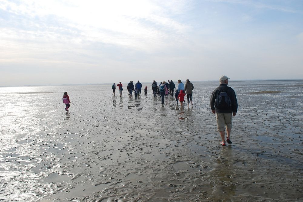 wadden-sea-hiking-5