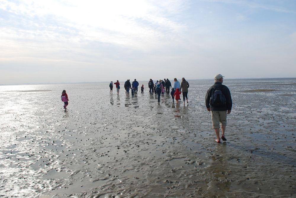 wadden-sea-hiking-5