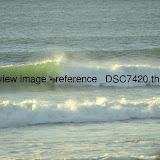 _DSC7420.thumb.jpg