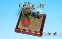 >Coffie life -Colombia-
